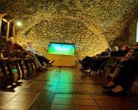 Wycieczka do Kamienia Śląskiego