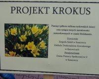 Międzynarodowy Projekt KROKUS