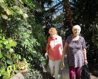 Wystawa orchidei w Egzotarium