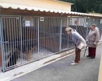 Wyjazd do schroniska dla zwierząt
