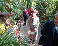 Dni orchidei i kaktusów