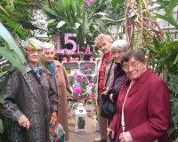 Wystawa orchidei w sosnowieckim Egzotarium