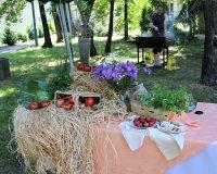 Lato w ogrodzie DPS nr 2